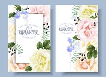 Vector vintage floral banners with garden roses. And sweet pea flowers on white. Romantic design for natural cosmetics, perfume, women products. Can be used as stock illustration