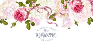 Romantic garden border. Vector vintage floral border with peony, hydrangea, rose flowers and ribbon. Romantic design for natural cosmetics, perfume, women royalty free illustration
