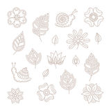 Vector vintage floral design elements set in mono line style Stock Image