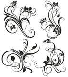 Vector vintage floral ornament. Floral motifs in vintage design. Patterned brushes - decorative elements for design Stock Photos