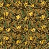 Vector vintage floral ylang-ylang illustration Royalty Free Stock Photography