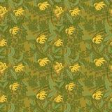 Vector vintage floral ylang-ylang illustration Stock Photography