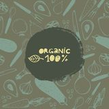 Vector vintage food illustration. hand drawn banner, card, flyer with pattern. 100 percent organic Royalty Free Stock Images