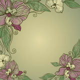 Vector vintage frame with flowers - orchid Royalty Free Stock Images