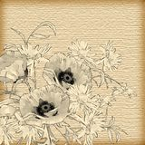 Vector Vintage Hand Drawing Flowers Stock Photo