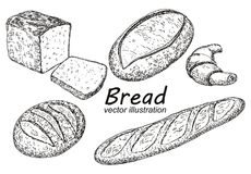 Vector vintage hand drawn sketch style bakery set vector illustration