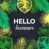 Vector vintage Hello summer illustration. Exotic palm leaves background. Hand sketched jungle foliage poster. Royalty Free Stock Photography