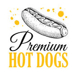 Vector vintage hot dog label. Hand drawn monochrome fast food illustration Stock Photos