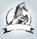 Vector vintage label with drawing horse Stock Photo