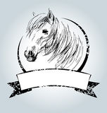 Vector vintage label with horse head Royalty Free Stock Photography