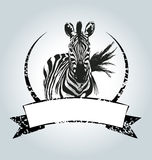 Vector vintage label with zebra Royalty Free Stock Photos