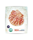 Vector vintage marine background with seashell. Card with sea theme. EPS10. Royalty Free Stock Photography