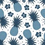 Vector Vintage pineapple seamless pattern Stock Image