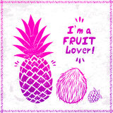 Vector Vintage pink pineapple Stock Photography