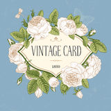 Vector vintage postcard. Royalty Free Stock Image