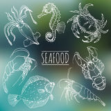 Vector vintage seafood sketches collection. Hand drawn fish illustrations for restaurant, cafe menu, market ad. Vector vintage seafood sketches collection Stock Photo