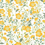 Vector vintage seamless floral pattern. Herbs and wild flowers. Botanical Illustration engraving style. Colorful yellow green on white background Royalty Free Stock Photos