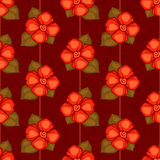 Vector vintage seamless pattern with red flowers. And dark brown background Royalty Free Stock Image