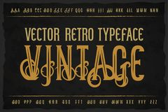 Vector vintage typeface. Vector font Stock Photo