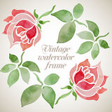 Vector vintage watercolor floral frame/ Stock Photography