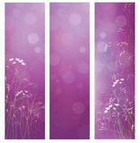 Vector violet floral banners for design. Royalty Free Stock Photo