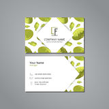 Vector visit card template with pattern  chinese cabbage in origami style Royalty Free Stock Photography
