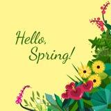 Vector vlak bloemenkader Het huis plant kader De lente bloemen vlak kader Bloemeninstallatieskader op wit decoratief Stock Foto's