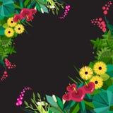 Vector vlak bloemenkader Het huis plant kader De lente bloemen vlak kader Bloemeninstallatieskader op wit decoratief Royalty-vrije Stock Afbeeldingen