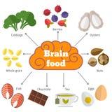 Vector vlakke infographics van het hersenenvoedsel Stock Afbeeldingen