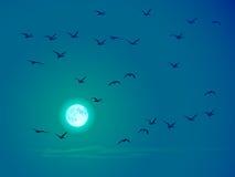 Vector vliegende vogels tegen bleke maan. Royalty-vrije Stock Afbeeldingen
