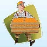Vector voorraadillustratie Het oogsten Een mens verzamelt sinaasappelen Stock Afbeelding