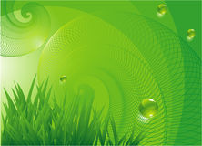 Vector vortex background. Nature. Royalty Free Stock Photography