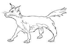 Vector vos vulpes vulpes fulva vector illustratie