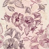 Vector wallpaper pattern with hibiscus flowers Stock Image