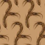 Vector wallpaper seamless brown. Peacock Feather Stock Photos
