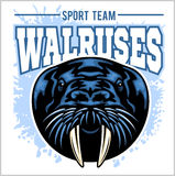 Vector Walrus logo template for sport teams, business etc. Stock Photography