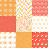 Vector Warm Flowers Set of Nine Matching Repeating Royalty Free Stock Image