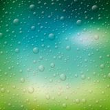 Vector water drops illustration on blurred nature background. Stock Images