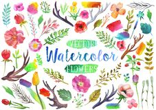 Vector watercolor aquarelle flowers and leaves. Royalty Free Stock Images