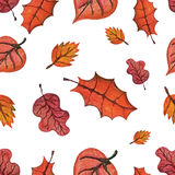 Vector Watercolor autumn Leaves seamless pattern. Royalty Free Stock Photo