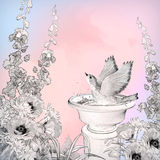 Vector Watercolor Bird Bath Sketch Flowers Royalty Free Stock Photography