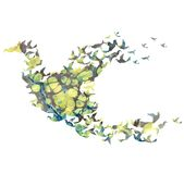 Vector watercolor  bird Royalty Free Stock Images