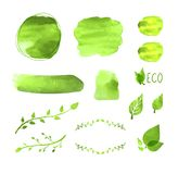 Vector Watercolor Blank Frames Set, Plants Drawings, Floral Design Elements, Green Paint Texture, Eco Concept, Icons Isolated. vector illustration