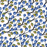 Vector Watercolor Blueberries branches seamless Royalty Free Stock Photo