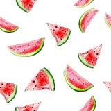Vector watercolor bright  watermelon seamless Royalty Free Stock Photo