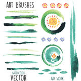 Vector watercolor  brushes and floral elements Stock Image