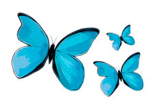 Vector watercolor butterfly Royalty Free Stock Photo