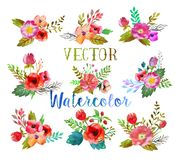 Vector watercolor buttonholes. Vector watercolor hand drawn  buttonholes with colorful flowers and leaves. The art paint on white background Royalty Free Stock Images