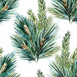 Vector watercolor christmas tree pattern Stock Images