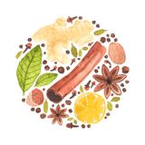 Vector watercolor circle design made of spices for Royalty Free Stock Photo